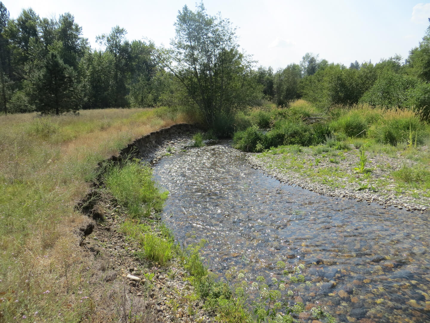 Neirbo HydroGeology